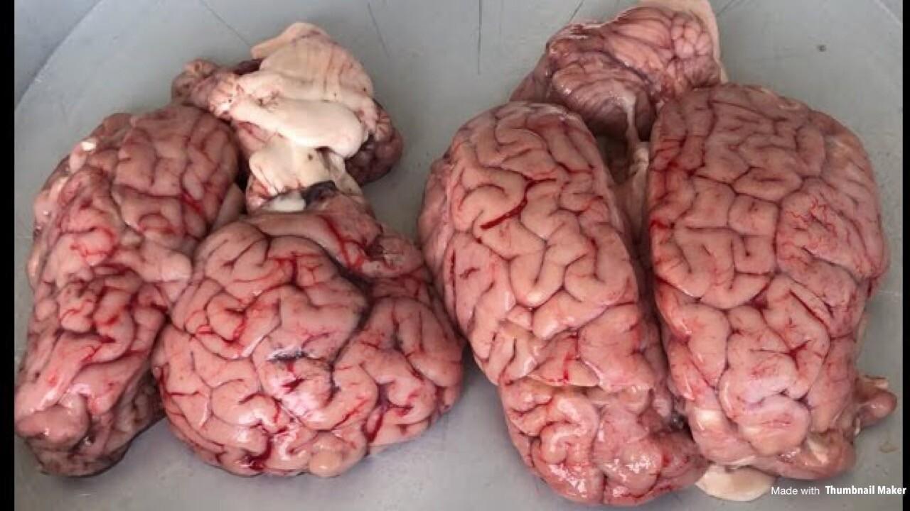 Beyin Kavurma Dürüm